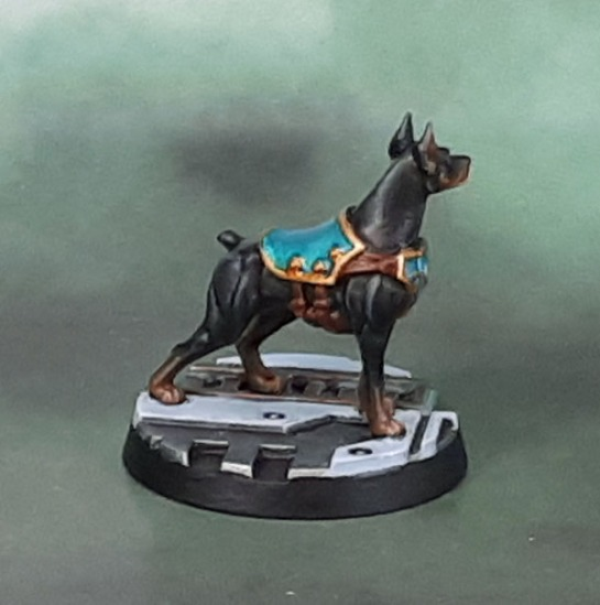 Kill Team Rogue Trader - Aximillion the Canid